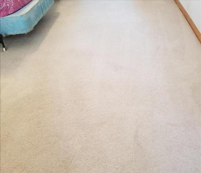 Carpet Cleaning in Breezy Point, MN After