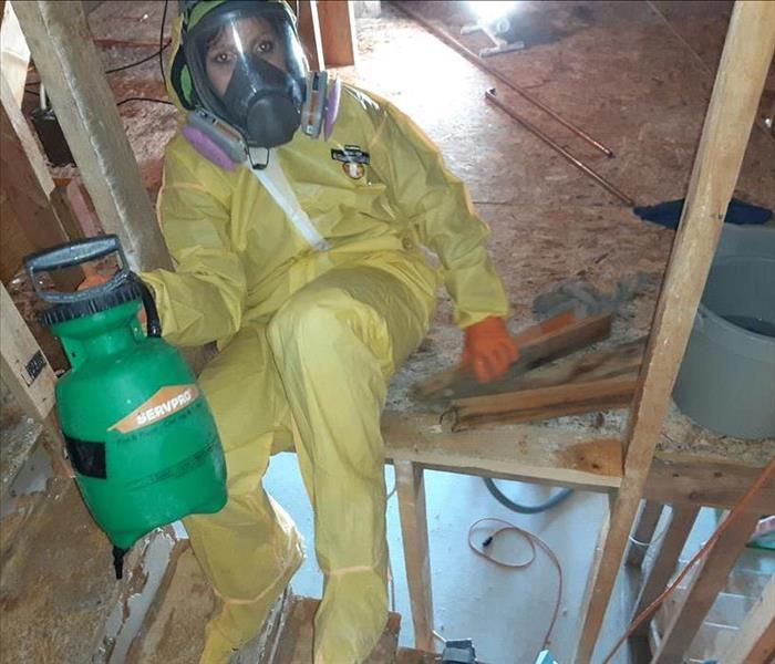 Picture of technician in full Personal Protective Equipment (PPE) performing a deep cleaning.