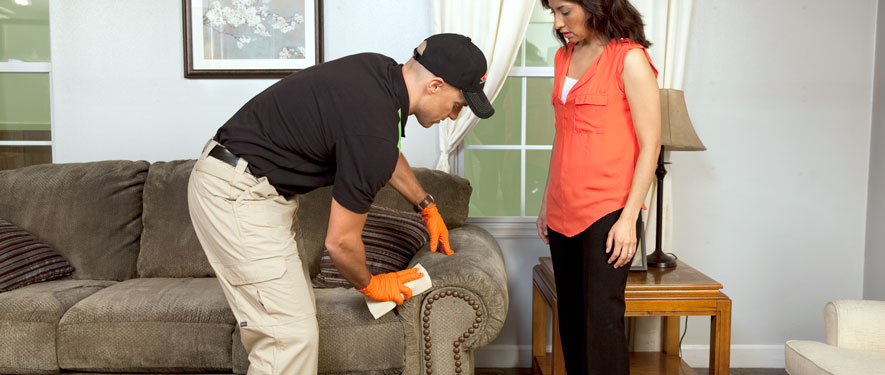 Brainerd, MN carpet upholstery cleaning